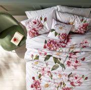 Ted Baker Iguazu Standard Pillowcase Pair 3